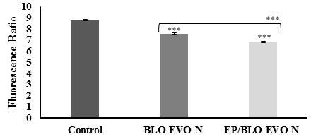 Figure 4. Mitochondrial permeability change of A549 cells detected by measuring the red/green fluorescence intensity ratio using JC-1stain. Data were expressed as mean ± SD (n = 3). Error bars display the ± SD. The independent t-tests evaluated the P-values. The (***) indicates the very highly significant differences between formulas (P < 0.001).