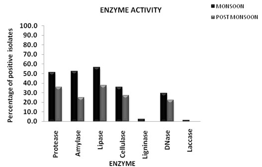 Figure 4: Percentage of bacterial isolates showing various enzyme activities during monsoon and post monsoon