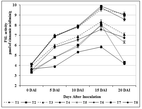 Figure 5. Accumulation of phenylalanine ammonium lyase activity by S. griseus in tomato plants challenged with the pathogen F. oxysporum f. sp. lycopersici. Vertical bars indicate standard deviations of three replications.