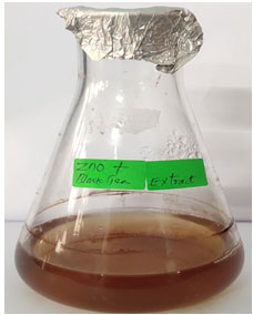 Fig 1: Synthesis of black tea extract (Camellia sinensis) mediated Zinc oxide nanoparticles.