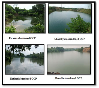 Figure 1. Images of Four OCP
