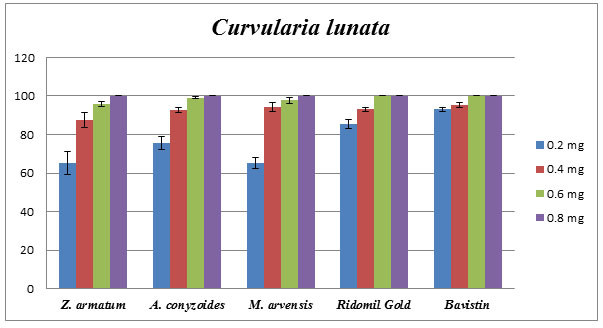 Fig. 4. Comparative effect of Z. armatum, A. conyzoides, M. arvensis oils, Reidomil Gold, and Bavistin on phytopathogenic C. lunata. Percentage of growth inhibition established using poison food technique.