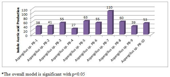 Figure-1. IAA production (µg/ml) by Aspergillus species