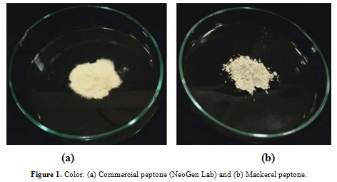 Figure 1:Color. (a) Commercial peptone (NeoGen Lab) and (b) Mackerel peptone.