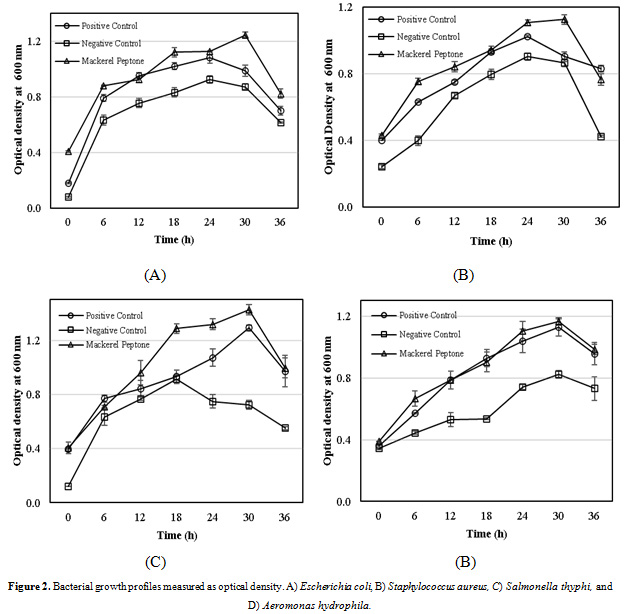 Figure 2:Bacterial growth profiles measured as optical density. A) Escherichia coli, B) Staphylococcus aureus, C) Salmonella thyphi, and D) Aeromonas hydrophila.